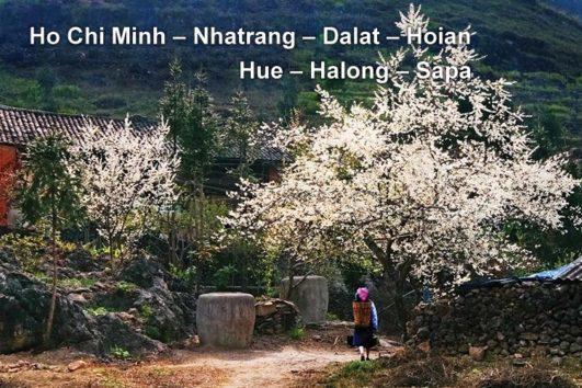 Pa Tour – Hue – Halong – Sapa